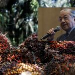 Palm Oil Issue: Indian Government Has Not Said Anything – Dr Mahathir